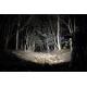 Linterna Fenix PD40 1600 Lumens